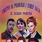 Ubistvo na svirep i podmukao nacin i iz niskih pobuda (1969)