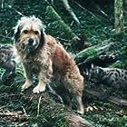 Benjean and Malina in Benji the Hunted (1987)