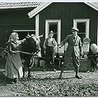 En piga bland pigor (1924)