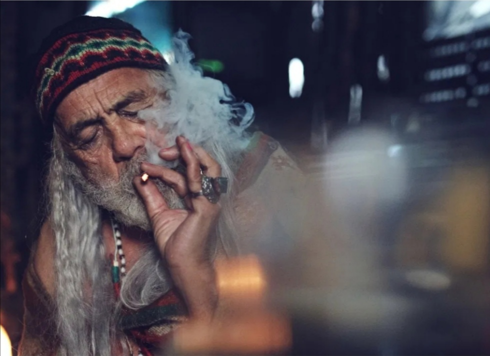 Tommy Chong in Color Out of Space (2019)