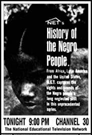 History of the Negro People Poster