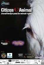 Citizen Animal
