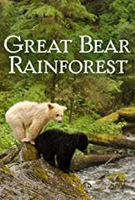 Primary photo for Great Bear Rainforest