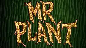 Mr. Plant