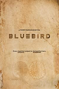 Top downloading sites for movies Bluebird by Wes Miller [4K]