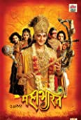 Mahabharat (2013-2014)
