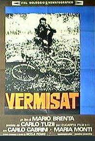 Primary photo for Vermisat