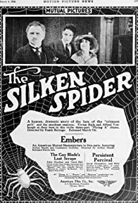 Primary photo for The Silken Spider