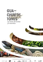 Guachimontones. The limits of man and nature.