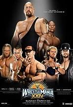 WrestleMania XXIV