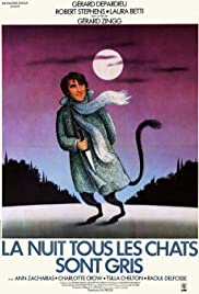 At Night All Cats Are Crazy Poster