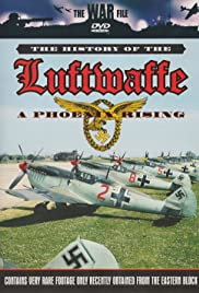 The History of the Luftwaffe Poster