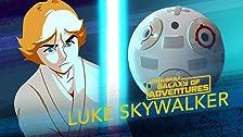 Luke Skywalker - Lightsaber Training