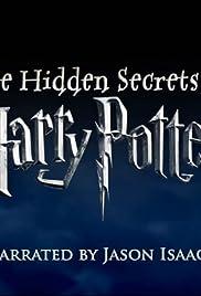 The Hidden Secrets of Harry Potter Poster