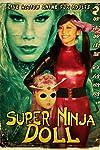 Super Ninja Bikini Babes (2007)