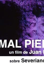 Animal Piedra Poster