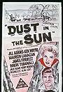 Dust in the Sun