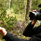 Nicholas de Pencier in La grande migration des papillons monarque (2011)