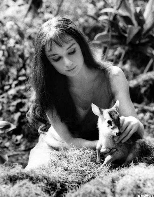 Audrey Hepburn in Green Mansions 1959