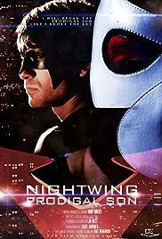 Nightwing: Prodigal Poster