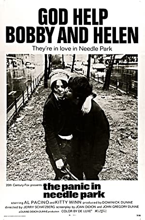 The Panic in Needle Park Poster Image