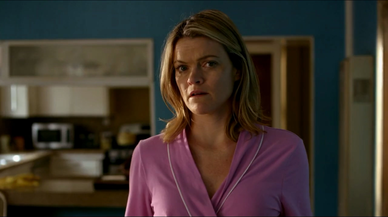 Missi Pyle in Cleaners (2013)
