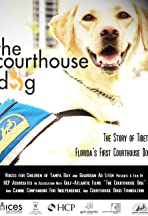 The Courthouse Dog