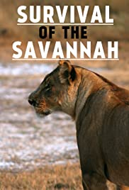 Survival on the savannah Poster