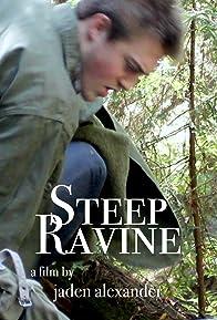 Primary photo for Steep Ravine