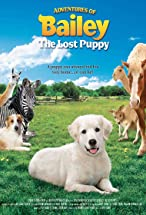 Primary image for Adventures of Bailey: The Lost Puppy