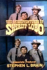Claude Akins, Brian Kerwin, and Mills Watson in The Misadventures of Sheriff Lobo (1979)