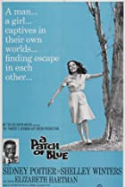 A Patch of Blue (1965) Poster