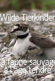 Wilde Tierkinder Poster