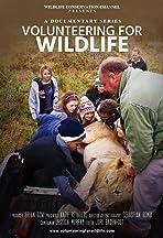 Volunteering for Wildlife -South Africa 1.0