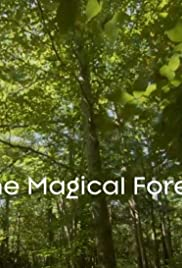 The Magical Forest Poster