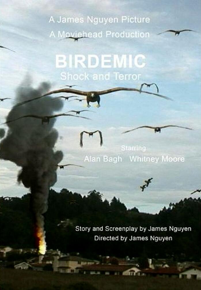 Birdemic: Shock and Terror (2010) - IMDb