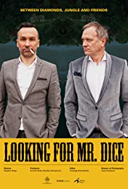 Looking for Mr. Dice Poster