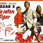 Gisela Hahn, Brad Harris, and Tony Kendall in Kommissar X jagt die roten Tiger (1971)
