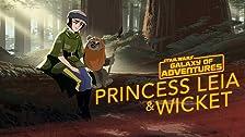 Princess Leia - An Unexpected Friend