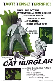The Cat Burglar Poster - Movie Forum, Cast, Reviews
