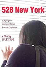 528 New York