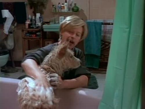 Ellen: Fleas Navidad