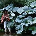 Zhizn i udivitelnye priklyucheniya Robinzona Kruzo (1973)