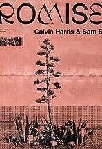 Calvin Harris & Sam Smith: Promises