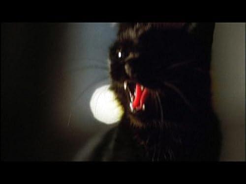Masters of Horror: Stuart Gordon - The Black Cat