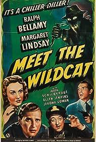 Ralph Bellamy, Allen Jenkins, Margaret Lindsay, and Joseph Schildkraut in Meet the Wildcat (1940)