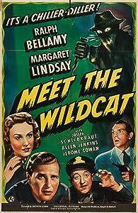 Meet the Wildcat USA