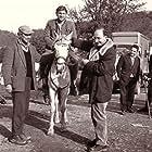 Miodrag Popovic and Velimir 'Bata' Zivojinovic in Covek iz hrastove sume (1964)