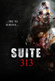 Suite 313 Poster