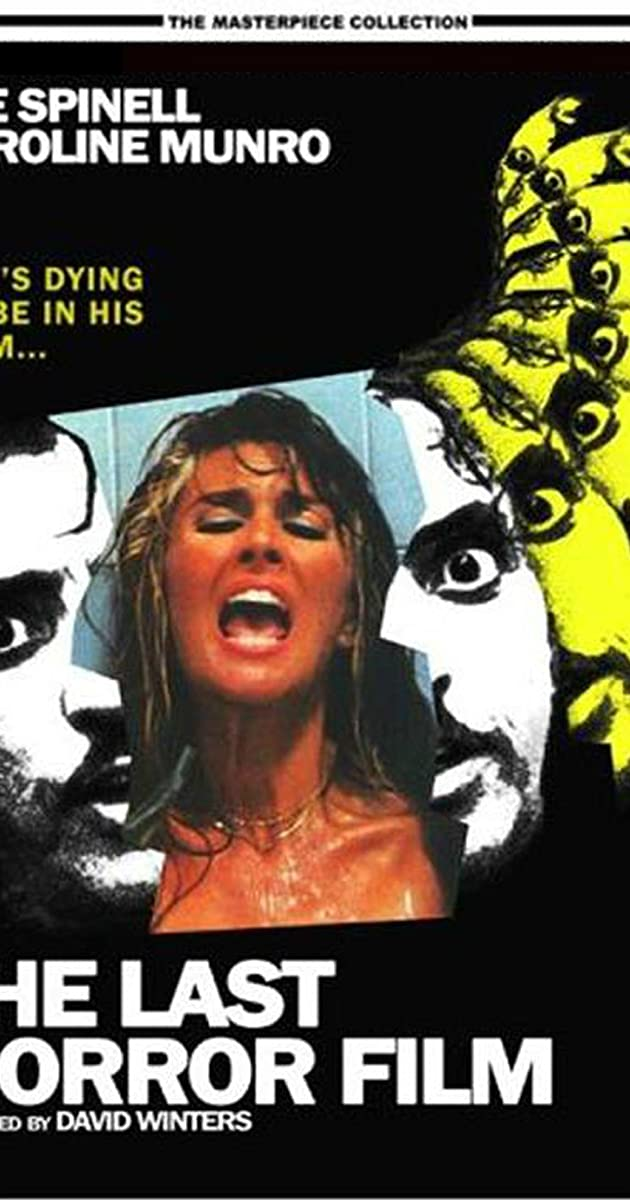 Subtitle of The Last Horror Film